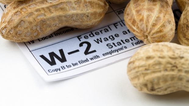 Earning Peanuts for Wages W-2