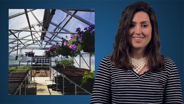 ISS News Desk: St. Louis Self-Storage Operator Leases Rooftop for Urban-Farming Project