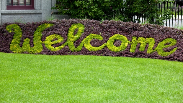 Welcome Lawn