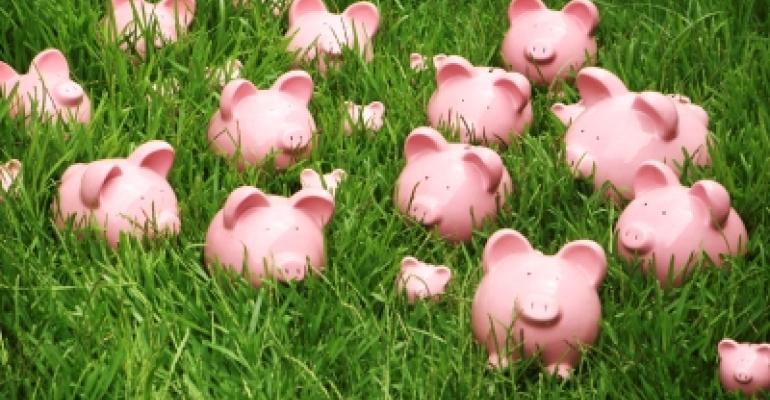 Piggy banks on green lawn