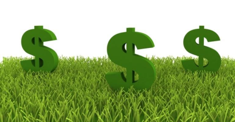 Dollar Signs on Green Lawn