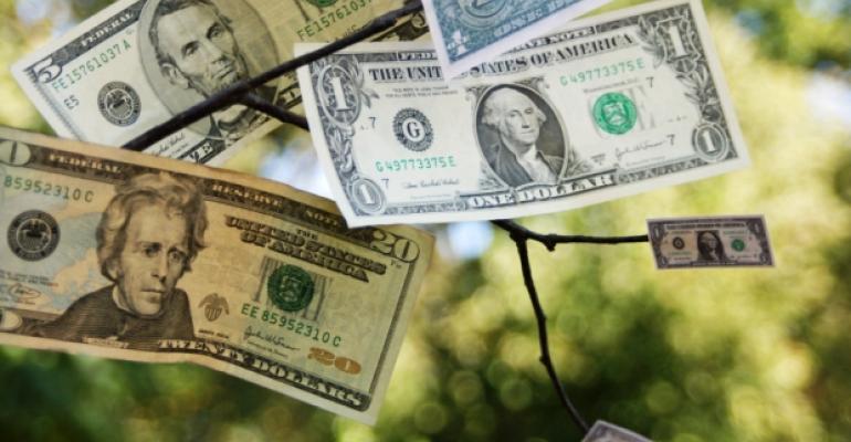 Easy Money Growing on Tree