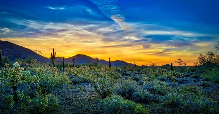 Arizona-Desert.jpg