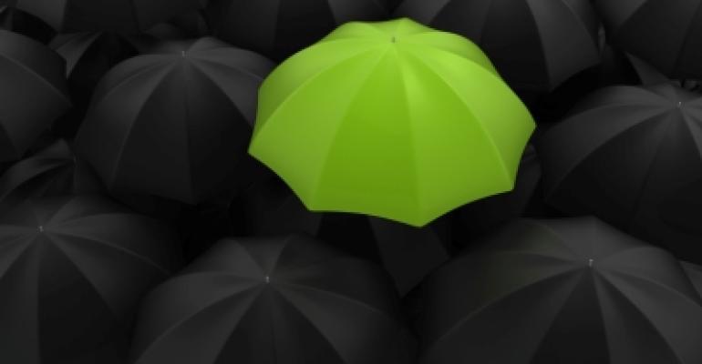 Umbrella Protection Insurance***