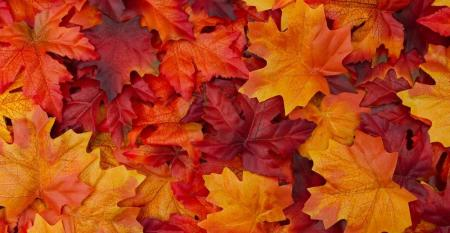 Autumn Reflections: How Does Your Self-Storage Operation Embody the Spirit of Fall?